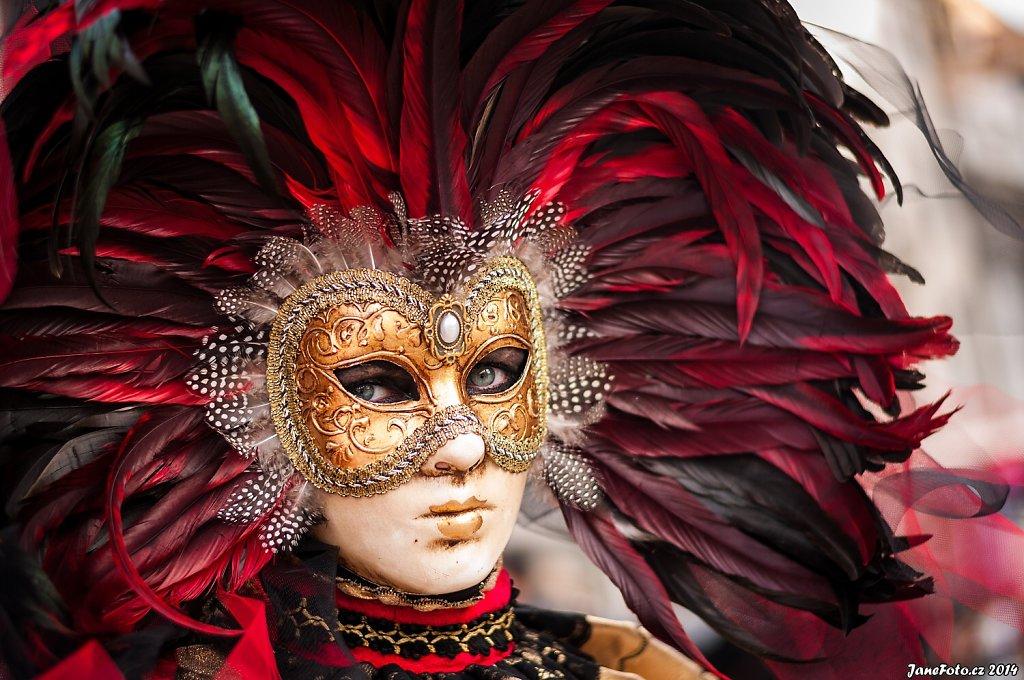 Karneval v Benátkách 2014